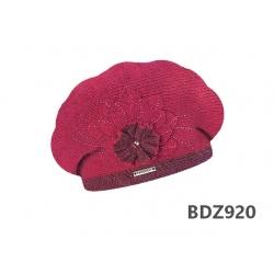 BDZ920