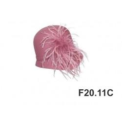FP20.11C