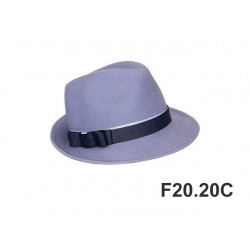 F20.20C