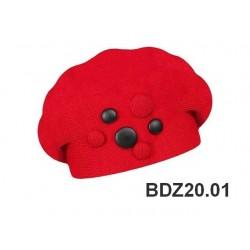 BDZ20.01
