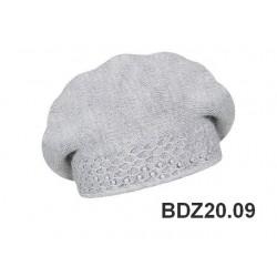 BDZ20.09