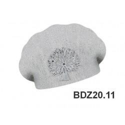 BDZ20.11