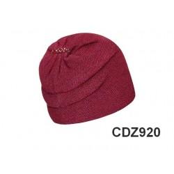 CDZ920