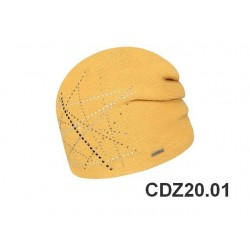 CDZ20.01