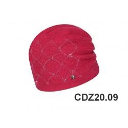 CDZ20.09