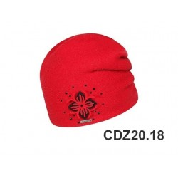 CDZ20.18