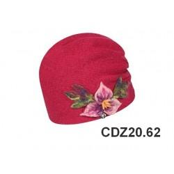 copy of CDZ20.61